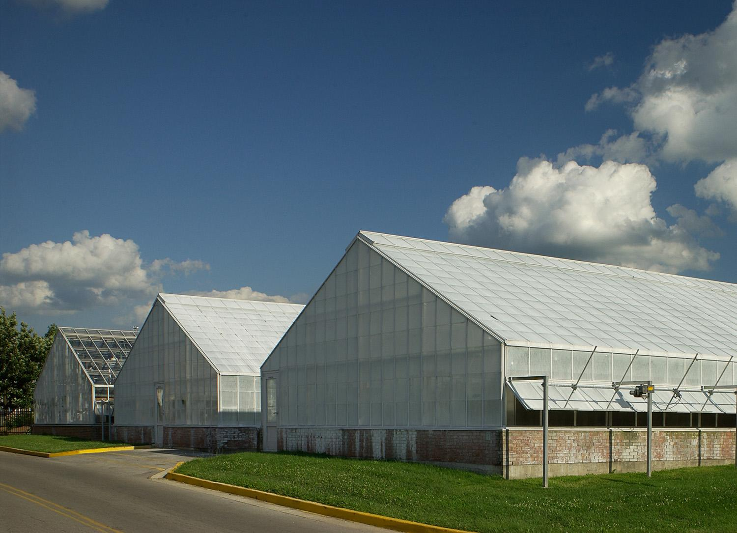 Greenhouse on campus